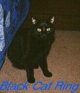Black Cat Ring!